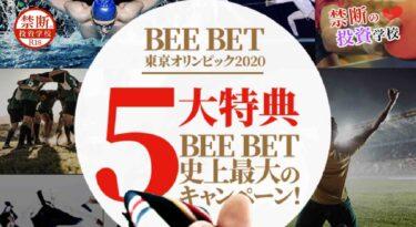 【BeeBet】詐欺なの?怪しいスポーツベットのカジノ?運営会社の情報は?稼げるのか検証授業!